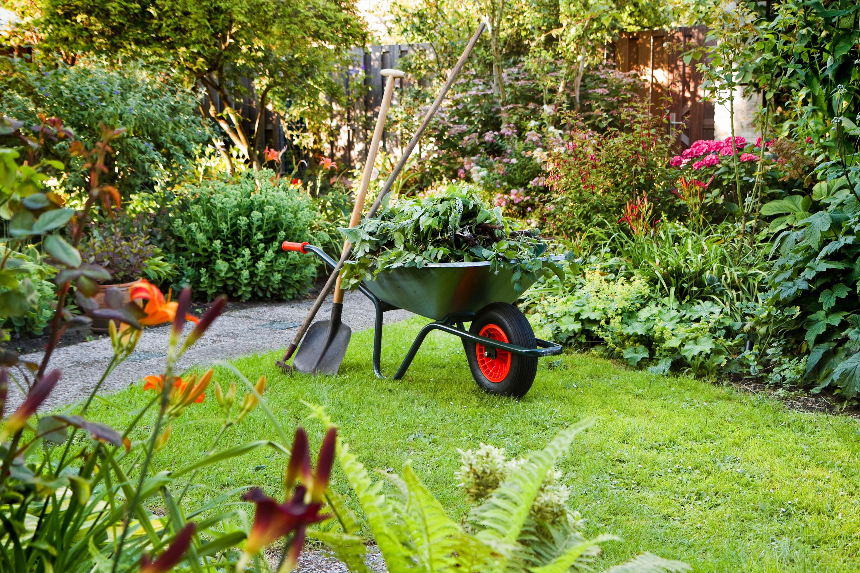 Tijd Voor Tuin : De japanse tuin in den haag follow my footprints
